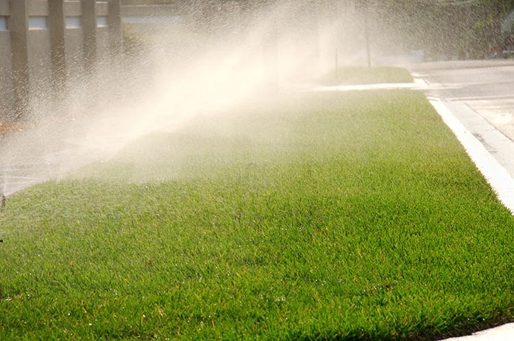 Front yard water sprinkler system watering a field of grass by a residential street